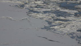 Ice sheets on the Danube river. In Tulcea, Romania stock video footage