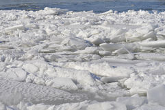 Ice sheets float on the river Danube stock image