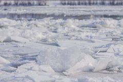 Ice sheets floating royalty free stock photos