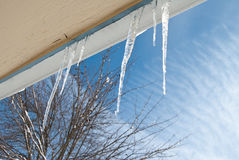 Ice Sickles Stock Photos