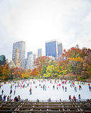 Ice skaters Royalty Free Stock Image