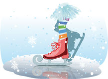 Ice skates girl Stock Photography