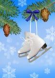 Ice skates on tree Stock Images