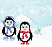 Ice skating penguins Stock Images