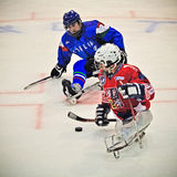 Ice Sledge Hockey Stock Image