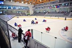 Ice Sledge Hockey Royalty Free Stock Photos