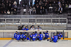 Ice Sledge Hockey Royalty Free Stock Image
