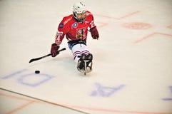 Ice Sledge Hockey Royalty Free Stock Photography