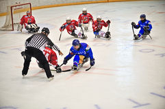 Ice Sledge Hockey Royalty Free Stock Images