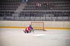 Ice Sledge Hockey Stock Images