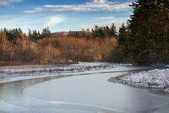 Ice on a Slough on Lummi Island Royalty Free Stock Photography