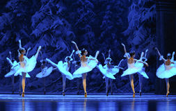 Ice and snow elves-The first act of fourth field snow Country  -The Ballet  Nutcracker. Ukraine Kiev theatre ballet dancers perform the Nutcracker in Nanchang in Stock Images