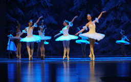 Ice and snow elves in the surface reflection-The first act of fourth field snow Country  -The Ballet  Nutcracker. Ukraine Kiev theatre ballet dancers perform the Stock Photos