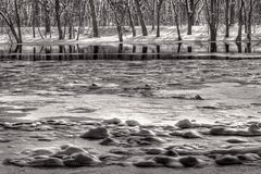 Ice and snow in the Grand River Royalty Free Stock Photo