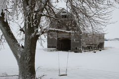 Ice,Snow & Icicles. Photo of an ice and snow covered tree w/swing and a corn crib which has lots of icicles Royalty Free Stock Images