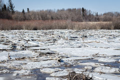 Ice and snow jams on the river in spring time. Stock Photography