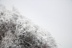 Ice and snow Stock Photos