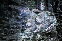 Ice Sphere. Magical ice sphere created with photomanipulation stock images
