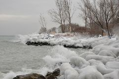 Ice spray rocks and trees along lake shore Royalty Free Stock Photography