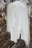 The ice stalactite ice. Frozen water in the forest stock photo