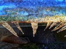 Ice stalactites in the morning. Colours stock image
