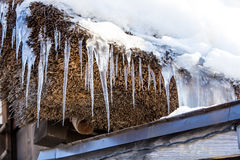 Ice Stick Royalty Free Stock Photography
