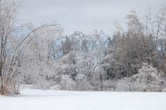 Ice Storm Royalty Free Stock Images