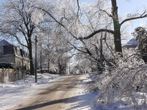 Ice storm Royalty Free Stock Photography