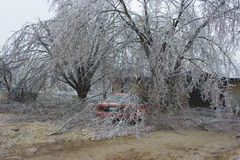 Ice Storm Damage. A passenger car is damaged by falling limbs cause by a severe ice storm Royalty Free Stock Images