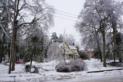 Ice Storm - December 22, 2013 Southern Ontario Stock Image