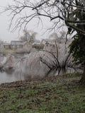 Ice storm Kentucky royalty free stock photography
