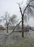 Ice storm obstruction Royalty Free Stock Images