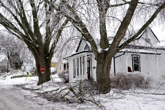 Ice Storm Port Hope - December 22, 2013 Southern O Royalty Free Stock Photos