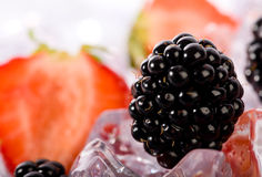 Ice Strawberries and Blackberries Stock Images