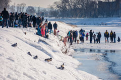 Ice swimming on Epiphany Day. UZHGOROD, UKRAINE - January 19, 2017: Ice swimming in Greek-Catholic parishioner on Epiphany Day Stock Image