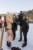 Ice swimming funs Royalty Free Stock Image