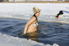 Ice swimming funs Royalty Free Stock Images