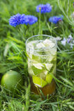 Ice tea in garden flowers Royalty Free Stock Images