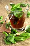 Ice tea hot drink infusion english earl grey Royalty Free Stock Images