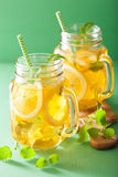 Ice tea with lemon and melissa in mason jars.  royalty free stock images