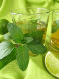Ice tea with lemon mint Royalty Free Stock Photos