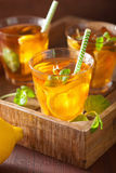 Ice tea with lemon and mint on dark rustic background Stock Photography