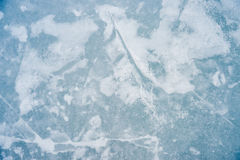 Ice texture on outdoor rink Royalty Free Stock Image