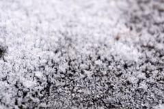 Ice texture tracery tracks tranquil, stock photos