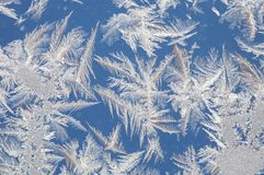 Ice textute. Morning frost on glass on a cold winter day, ice textute Royalty Free Stock Photography