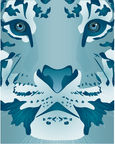 Ice Tiger Stock Photo