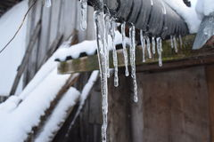 Ice transparent icicles. From the roof of the house Stock Photo