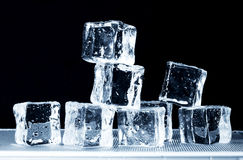 Ice on Tray Stock Photography