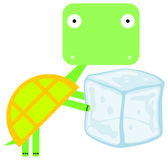 Ice turtle Royalty Free Stock Photo