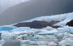 Ice and water. A glacier flows until argentino lake, in the argentinian patagonia Royalty Free Stock Photos